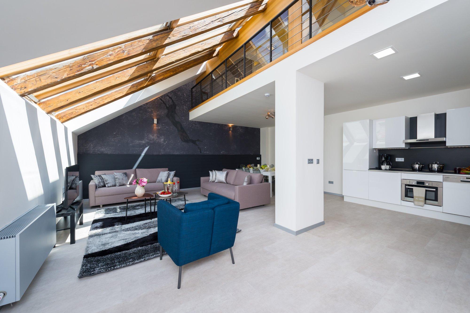 Půdní byt 5+kk, plocha 132 m², ulice U Půjčovny, Praha 1 - Nové Město | 3